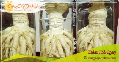 Mua bán Lá Đinh Lăng khô, củ đinh lăng điêu khắc ngâm rượu tại Hà Nội